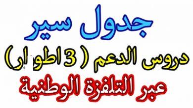 Photo of برنامج وزارة التربية للتدريس عبر القناة الارضية