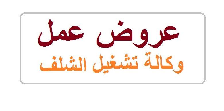 Photo of عروض عمل وكالة تشغيل تنس .. ولاية الشلف