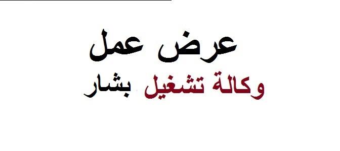 Photo of وكالة تشغيل بشار