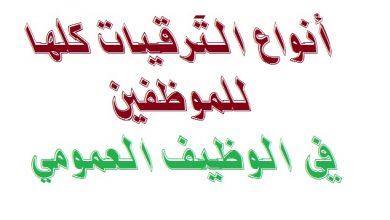 Photo of انواع الترقية للموظفين