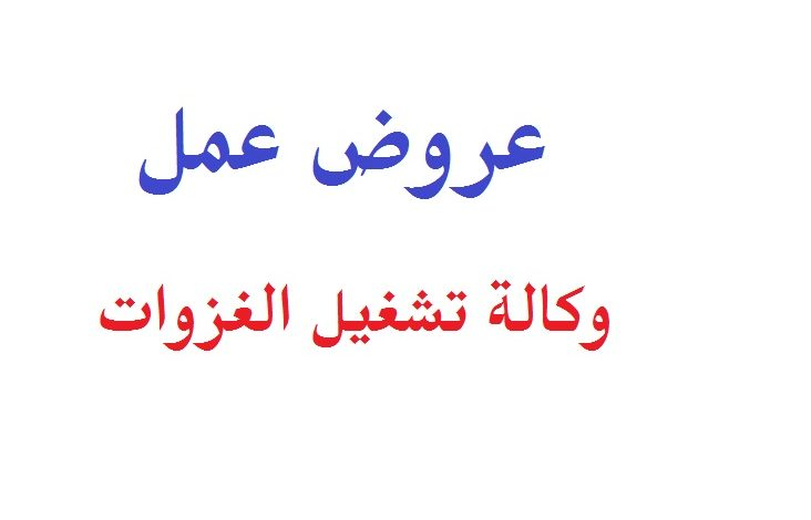 Photo of عروض عمل وكالة تشغيل الغزوات