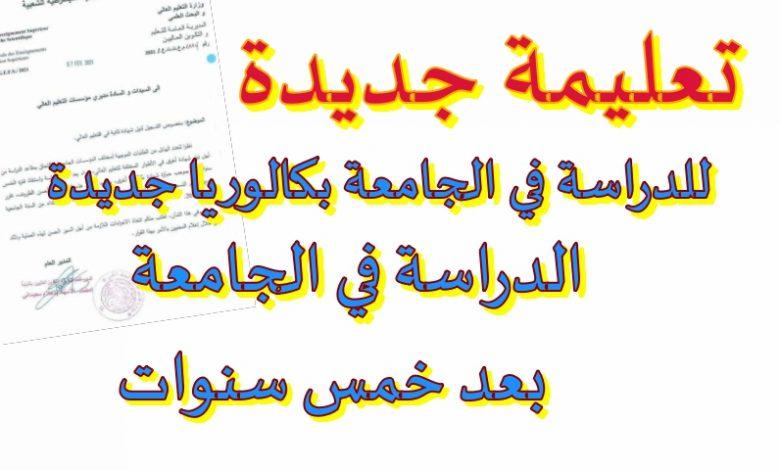 Photo of الدراسة في الجامعة لاصحاب بكالوريا ثانية